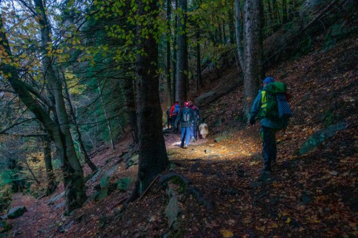 Norge Bergen - Spennende turer på Fløyen med hodelykt